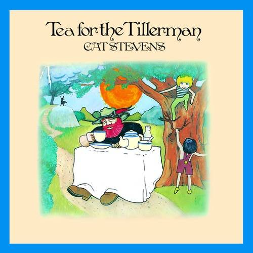 Vinilo Cat Stevens Tea For The Tillerman 042284235211