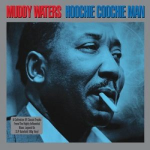 Portada Vinilo Muddy Waters